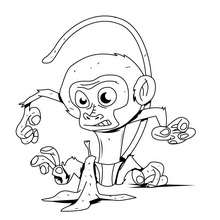 dibujo BEBE CHIMPANCE - Dibujos para Colorear y Pintar - Dibujos para colorear ANIMALES - Dibujos ANIMALES SALVAJES para colorear - Dibujos ANIMALES DE LA JUNGLA para colorear - Colorear MONOS - Dibujos para pintar CHIMPANCE