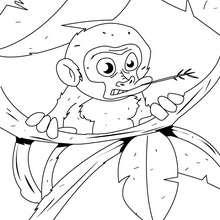 dibujo mono en los arboles - Dibujos para Colorear y Pintar - Dibujos para colorear ANIMALES - Dibujos ANIMALES SALVAJES para colorear - Dibujos ANIMALES DE LA JUNGLA para colorear - Colorear MONOS - Dibujos para colorear e imprimir MONOS