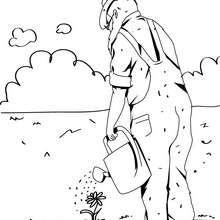 Dibujo de un jardinero - Dibujos para Colorear y Pintar - Dibujos para colorear PROFESIONES Y OFICIOS - Oficios y profesiones: Dibujos para pintar