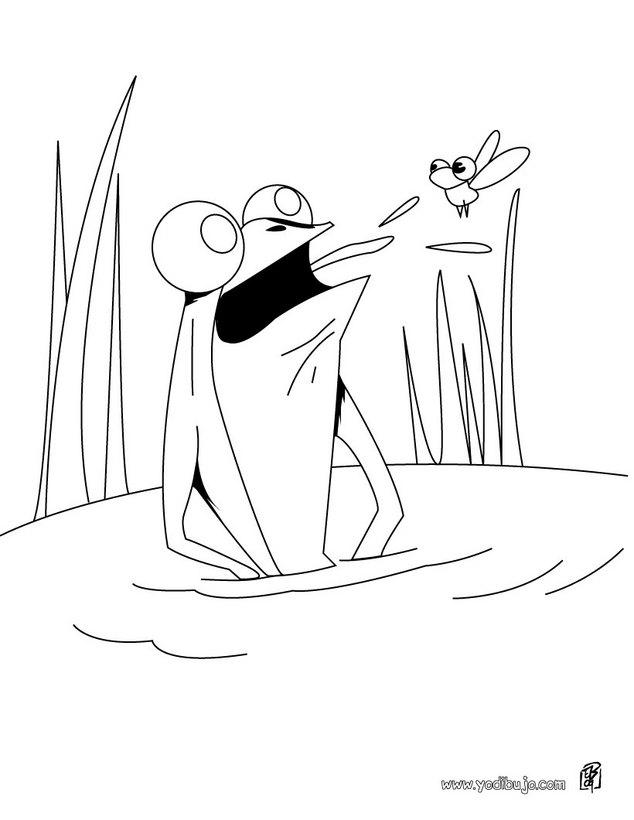 Dibujos para colorear la rana y el mosquito - es.hellokids.com