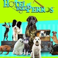 Hotel Para Perros PC