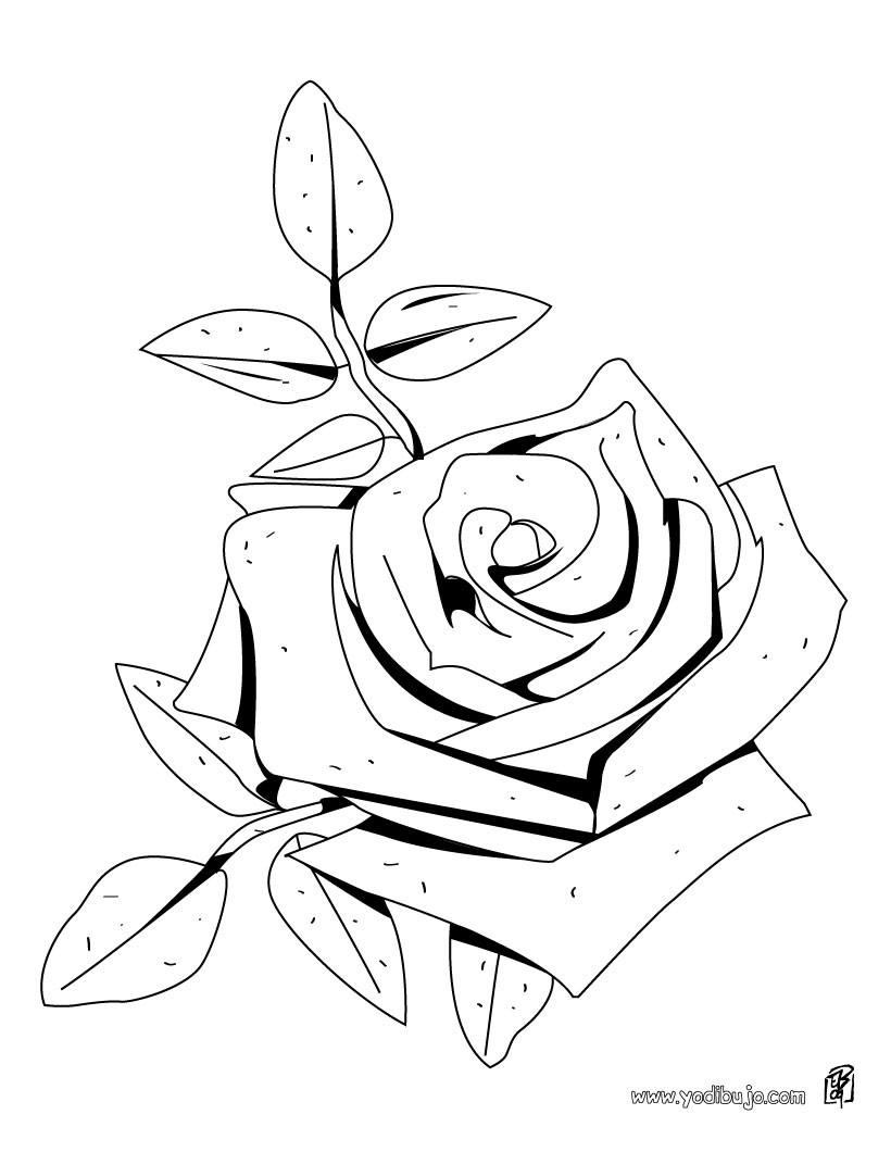 Dibujos para colorear una rosa - es.hellokids.com