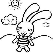 Dibujo de conejito - Dibujos para Colorear y Pintar - Dibujos infantiles para colorear - Especial Peques: Dibujos para colorear