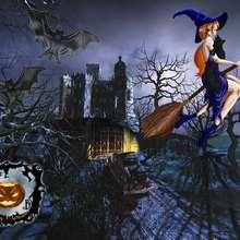 Fondo de pantalla : Fondo halloween bruja en su escoba