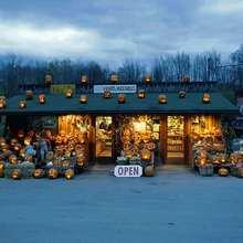 Fondo halloween calabazas encendidas