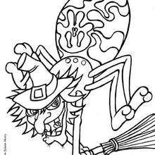 Dibujo para colorear : La araña