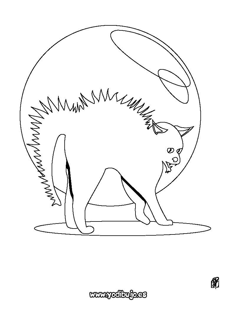 Dibujos de Gato Negro para colorear - Imprimir 22 gatos negros para ...
