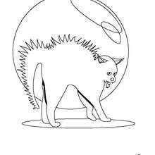 Dibujo para colorear : Gato negro enojado