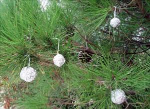 vista3-bola-navidad