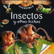 Insectos y otros bichos - Lecturas Infantiles - Libros infantiles : LAROUSSE Y VOX