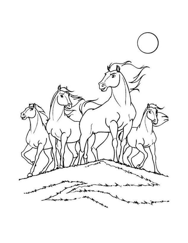 Dibujo para colorear : Spirit el caballo Mustang