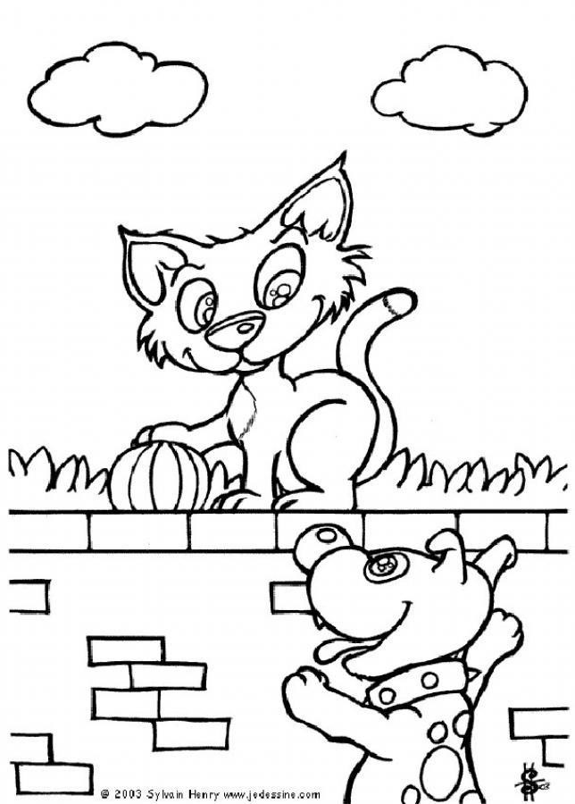 Gato en la pared - Dibujos para colorear e imprimir GATOS