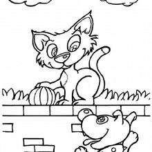 Dibujo para colorear : Gato en la pared