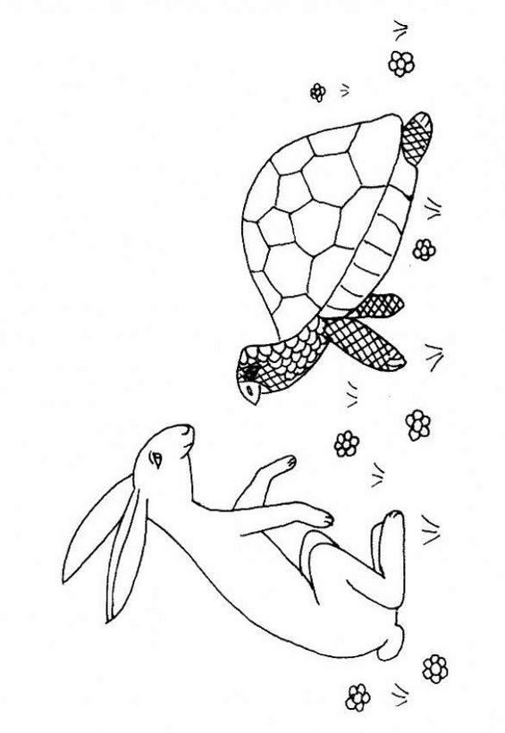 Dibujo para colorear : tortuga y liebre