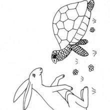 Dibujo para colorear tortuga y liebre - Dibujos para Colorear y Pintar - Dibujos para colorear ANIMALES - Dibujos REPTILES para colorear - Colorear dibujos TORTUGA - Dibujos para imprimir TORTUGAS