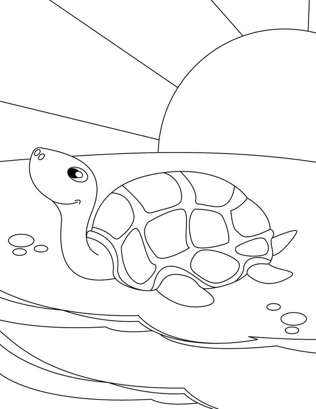 Tortuga : Dibujos para Colorear, Videos y Tutoriales, Lecturas ...