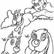 Perros en el campo - Dibujos para Colorear y Pintar - Dibujos para colorear ANIMALES - Dibujos PERROS para colorear - Dibujos para colorear gratis PERROS