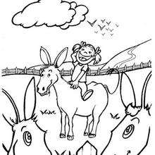 Dibujo la chica y el burro - Dibujos para Colorear y Pintar - Dibujos para colorear ANIMALES - Dibujos ANIMALES DE GRANJA para colorear - Colorear BURRO