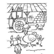 Dibujo PATO - Dibujos para Colorear y Pintar - Dibujos para colorear ANIMALES - Dibujos ANIMALES DE GRANJA para colorear - Colorear PATOS