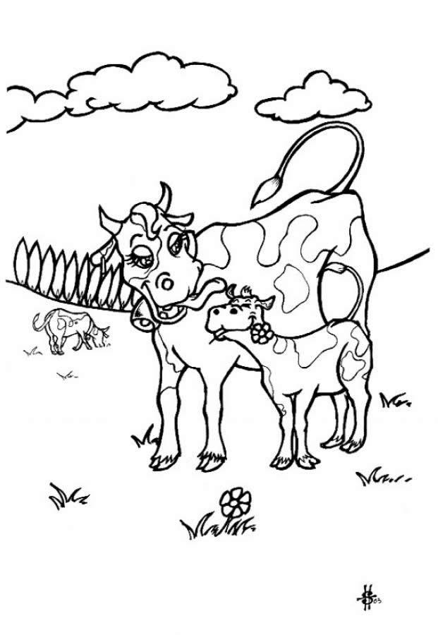 Una vaca con su ternero - Colorear VACAS