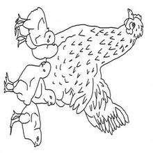 Dibujo para colorear : Una gallina con sus pollitos