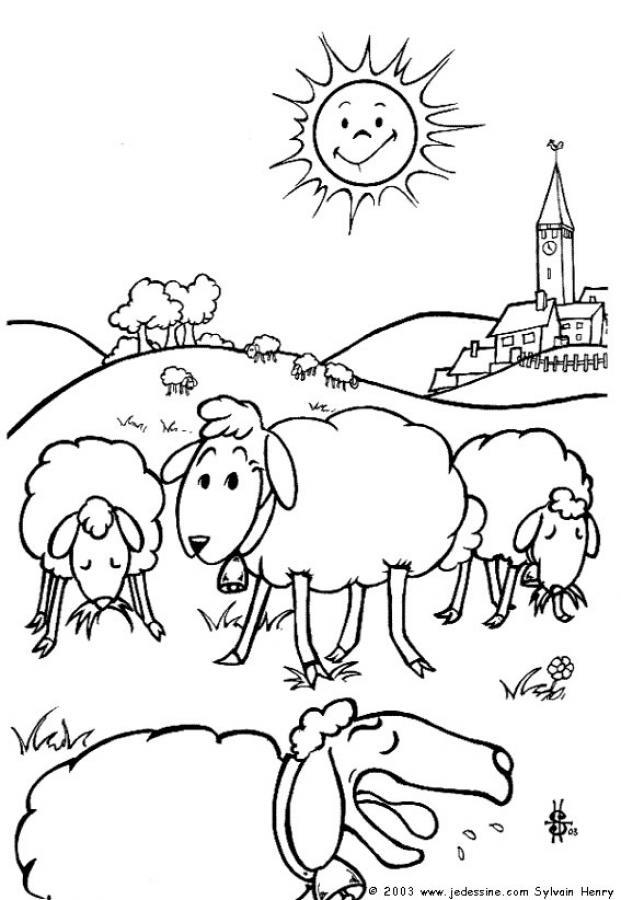 Dibujos para colorear ovejas - es.hellokids.com