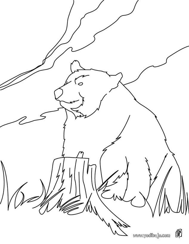 Dibujo para colorear : Oso Kodiak