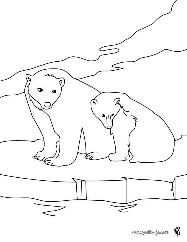 Dibujos Para Colorear Osos Polares Es Hellokids Com