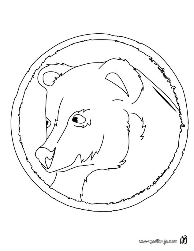 Dibujos para colorear retrato oso gris - Dessin de grizzly ...