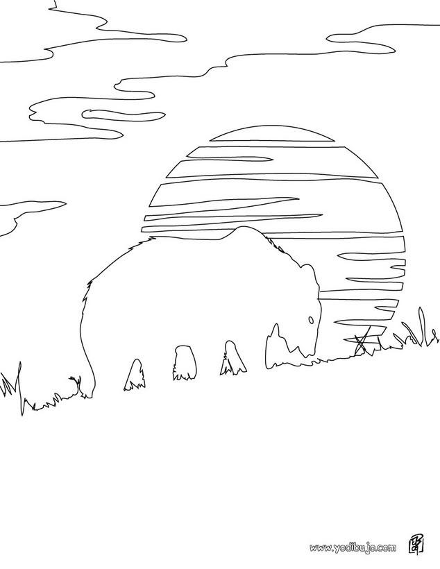 Dibujos para colorear oso pardo - es.hellokids.com