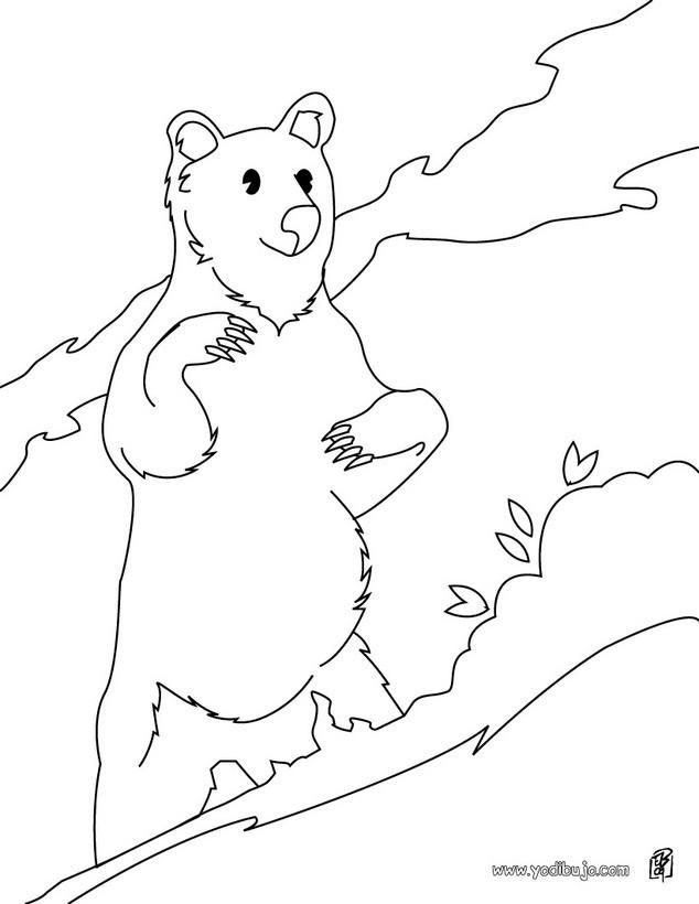 Dibujos para colorear oso de pie - es.hellokids.com