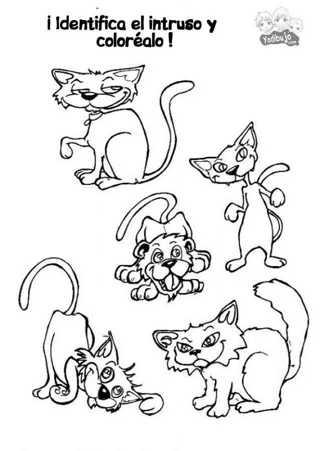 juego-de-colorear-intruso-gato