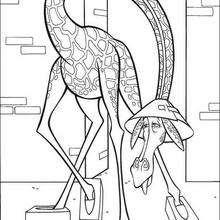 Dibujo madagascar Melman la jirafa  - Dibujos para Colorear y Pintar - Dibujos de PELICULAS colorear - Dibujos para colorear y pintar MADAGASCAR - Dibujos para pintar MADAGASCAR