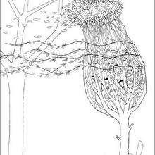 Dibujo para colorear el arbol hechizado por karaba - Dibujos para Colorear y Pintar - Dibujos de PELICULAS colorear - Dibujos para colorear KIRIKU  - Dibujos para colorear KIRIKU Y LA BRUJA