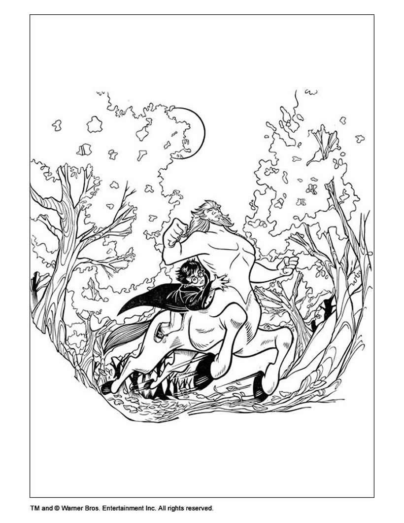 Dibujo para colorear : Harry Potter con el centauro