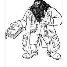Dibujo de hagrid el gigante para colorear - Dibujos para Colorear y Pintar - Dibujos de PELICULAS colorear - Dibujos para colorear HARRY POTTER - Dibujos para colorear RUBEUS HAGRID