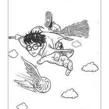 Dibujo Harry Potter jugando quidditch