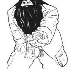 Dibujo para colorear : Hagrid, el semi-gigante