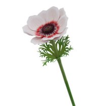 dia-madre-anemona-flor-papel-manualidades