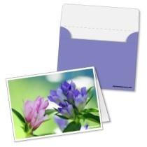 tarjeta-dia-madre-azul-flores