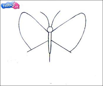 mariposa-papilio-dibujo