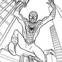 Spiderman Dibujos Para Colorear Juegos Gratuitos Videos