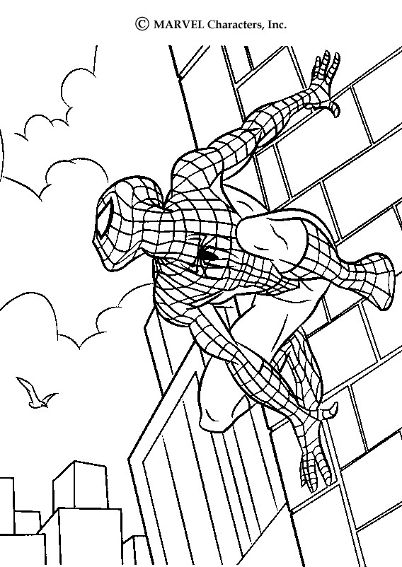 Dibujos para colorear SPIDERMAN, Spiderman suspendido para imprimir