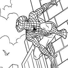 Dibujo para colorear Spiderman suspendido