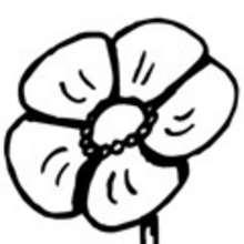 4-6 años, Dibujos de FLORES para pintar