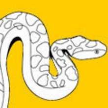 animales, Colorear dibujos SERPIENTE