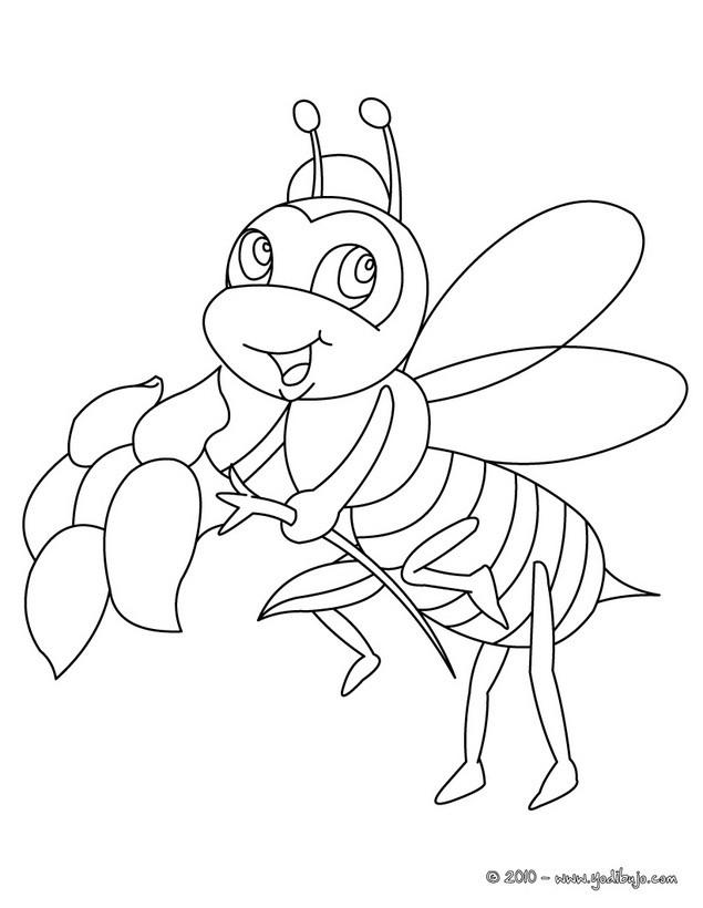 dibujo abeja colorear: