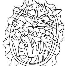 Dibujo para colorear : un gato en su canasta