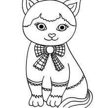 Dibujo para colorear : cachorro gato Cartujo