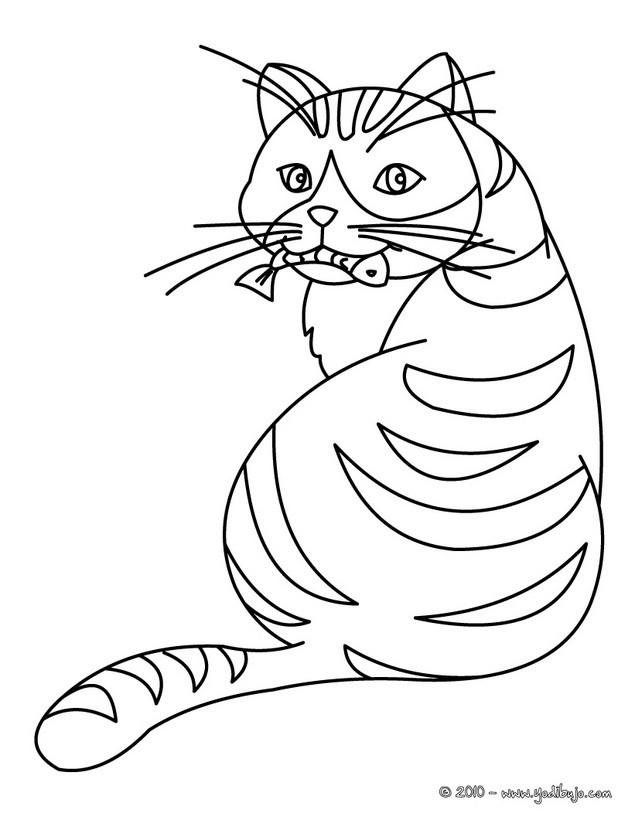 Dibujos GATOS para colorear, un gato comiendo pescado para imprimir